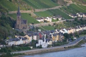 Rhine 2