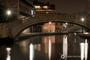 Art Show 1 - Venice