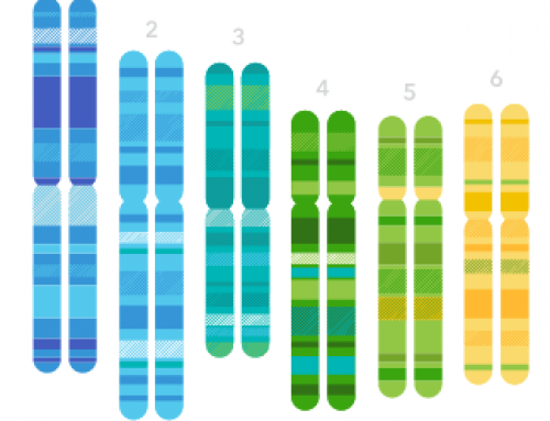 23andMe: I'm Intrigued By DNA Testing